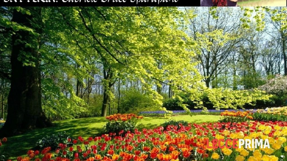 I giardini di marzo live eventi a lecce for I giardini di marzo